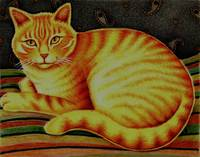 Orange Tabby Cat in Pencil