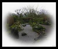 Welcome to my Japanese Garden