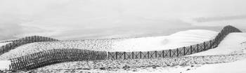 Wyoming Snow Fences, 2008