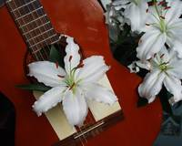 Guitar with lilies