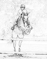 Jumping Horse-4 by Daniel Teetor