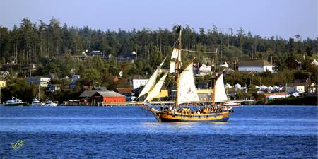 Tall Ship in Coupeville