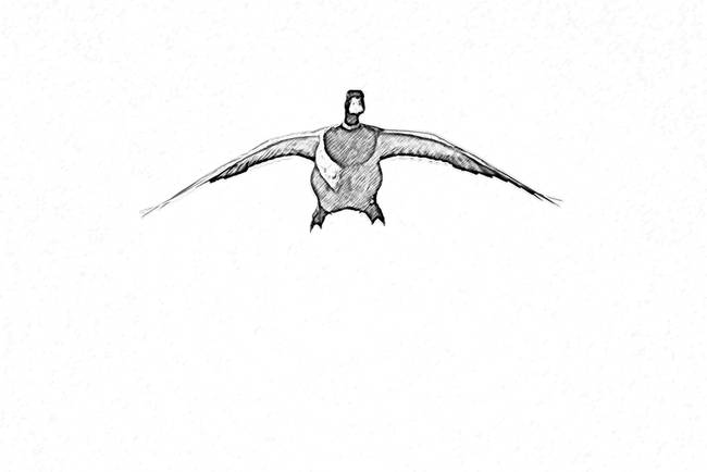 Cupped Wings Drawing-2