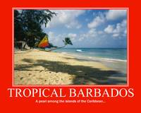 Tropical Barbados