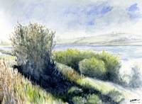 River Bank Watercolor