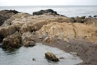 Point Lobos_10 09 09_40