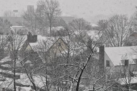 1-26-2011IMG_9178B by Walter Paul Bebirian