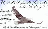 Flying Eagle Watercolor with Isaiah 40:31 Overlay