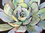 Agave Cactus Abstract Painting