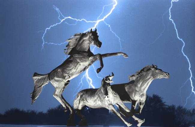 lightning bolts at horse world bw color print by james bo insogna