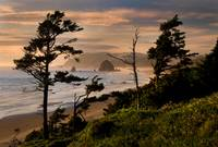 The Shores of Cannon Beach