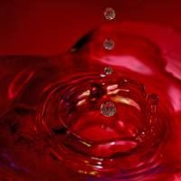 Red Heart Splash by Laura Mountainspring
