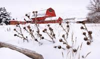 Winter Barn II by David Kocherhans