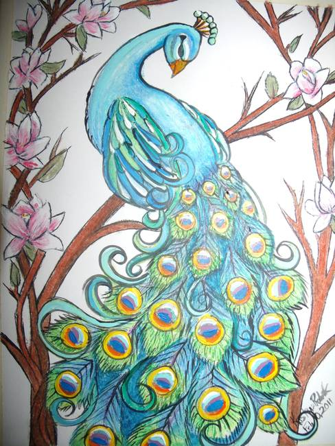 Stunning Quot Peacock Quot Oil Pastel Drawings And Illustrations