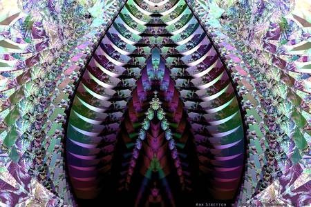 Crystalline Multipede by Ann Stretton