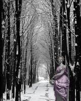 Dreams of Spring by Kristen Stein
