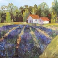 """Provence Lavender Fields"" by BarbaraRedingStudios"