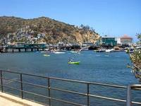 Catalina Island - Harbor