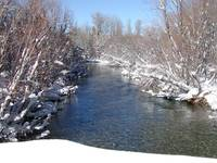 Taylor Creek in Winter