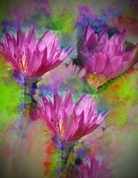 The Guardians of Dance