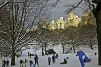 Snowboarding in Central Park