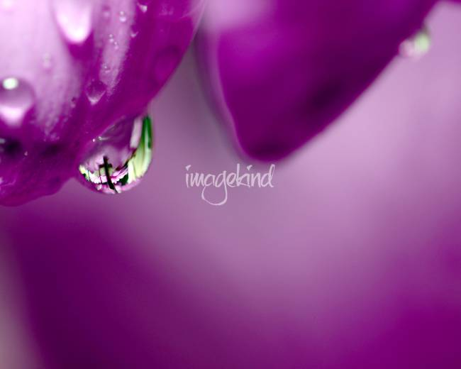 The Cross in Reflective Purple Water Drop