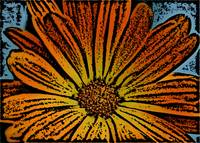 Orange Flower Woodcut