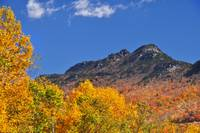 Grandfather Mountain In Autumn Splendor from Linvi