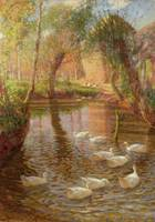 Ducks by Lindsay MacArthur (fl.c.1890-1930)