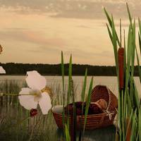 Moses in the Bulrushes by I.M. Spadecaller