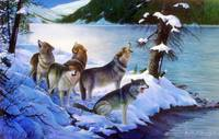 Wolf Pack Singing in the Night