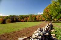 Autumn in New England Meadow