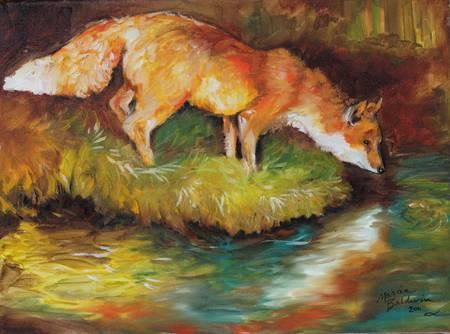 RED FOX I