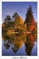 Autumn reflections 1