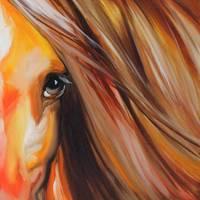 SIENNA SUNRISE EQUINE EYE by Marcia Baldwin