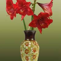 Crimson Amaryllis in Tall Vase by I.M. Spadecaller