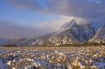 From the Mountains to the Prairies by Alan Sachanowski