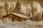 Old Cabin by Alan Sachanowski