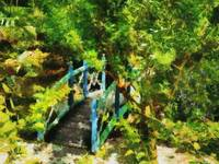 Cayman Islands Tropical Garden Ornamental Bridge