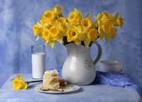 Daffodils Milk and Cake