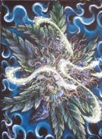 Dave De Ryke Marijuana fantasy artwork