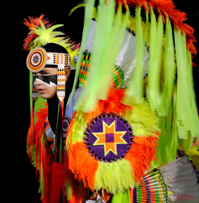 Cherokee Sun Dancer