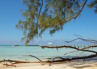 Cayman Islands Rum Point