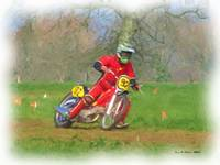 Grass Track Racing 4