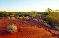 Red sands of the outback, Australia