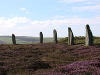 Stones In Heather