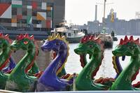 Sea Dragons Invade Baltimore!