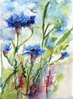 Cornflowers Wildflower Watercolor by Ginette