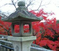 Ancient lantern post in Kyoto park