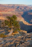 landscape grand canyon arizonaarizonaDSC_7701-1